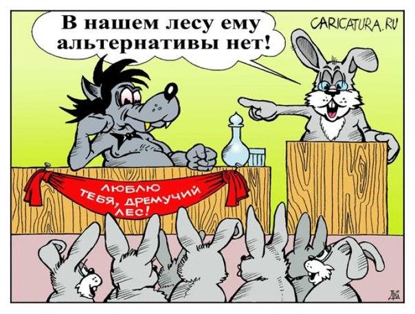 белорусская федерация бокса
