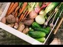 Новый план 2 месяца Сырых Овощей 1 День 22 5 2018