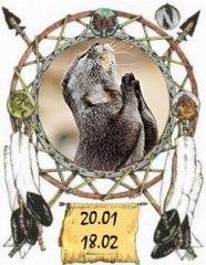 Индейский гороскоп - Выдра с 20 января по 18 февраля