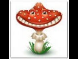 RoomB - FLY AGARIC