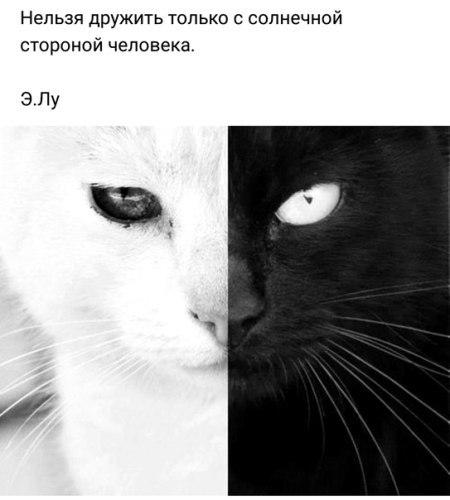 Фото №456252764 со страницы Юли Варламовой