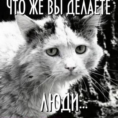 Ольга Кутявина