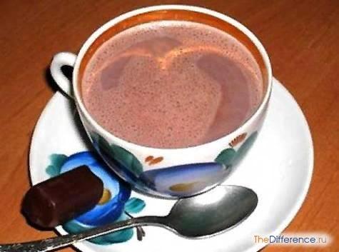 Разница между шоколадом и какао Шоколад это не только всем известная сладость, но и чудесный напиток, которым многие не отказались бы насладиться. И если речь идет именно о напитке, то невольно