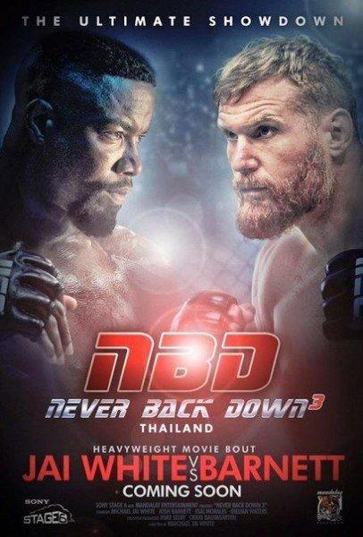 Подборка 3 самых новых фильмов про боевые искусства????