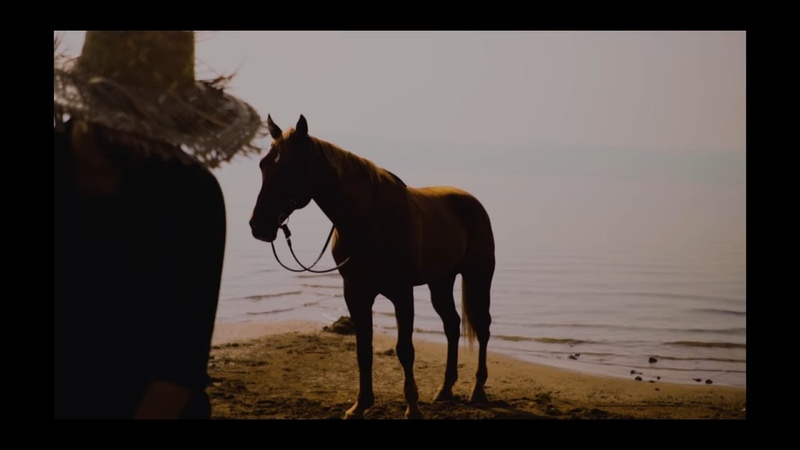 Blessed be Our God Psalm 68 32 34 on the Sea of Galilee w Dusty the Horse