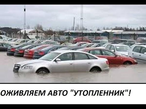 Оживляем авто утопленник
