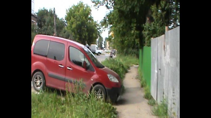 (видео)-Венёв парк-цветы-27-07-2017г (1)