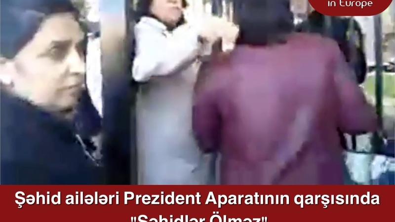 Şəhid ailələri Prezident Aparatının qarşısındaki Şəhidlər Ölməz aksiyası
