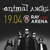 19 Апреля • ANIMAL ДЖАZ • Ray Just Arena