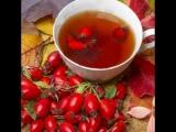 Чайный напиток из сушеных ягод Шиповника