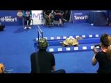 Кролик против черепахи- Таиланд, спринт 2016