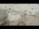 грязевой вулкан1