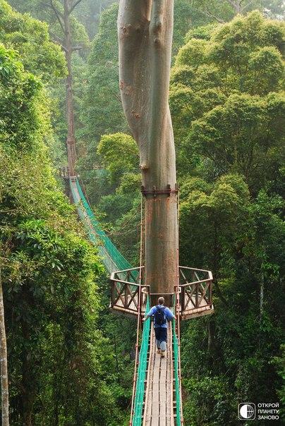Борнео, Филиппины