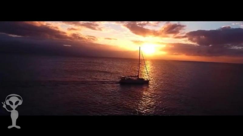 Видео с красивой природой HD