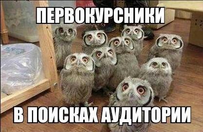 Хиханьки да хаханьки - Страница 3 OzLoHK6EpYI