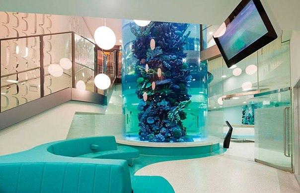Красочные интерьеры детских больниц K_5Wybvi-78