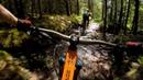 NOTHING BUT THE BEAST Mountain Biking Coed y Brenin in Wales