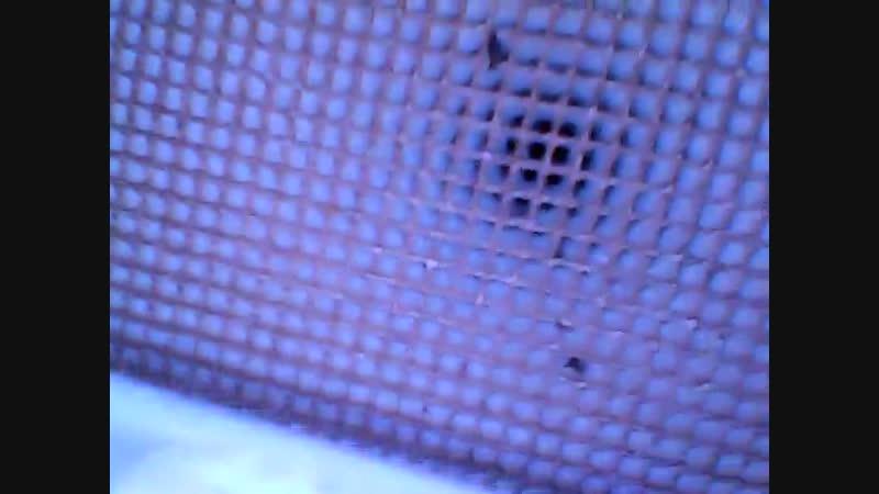 Диагностика катализатора эндоскопом Шевроле Круз 45000км пробега