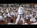 Часть2 Таеквон-До ИТФ Семинар Jurek Jedut Jaroslav Suska 2017 Taekwon-Do ITF Seminar part2