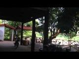 Отель в Паксе за 3$ и поиски еды. Лаос. Один год свободы.