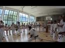 Capoeira Muzenza Austria Prof Perere Roda 2014