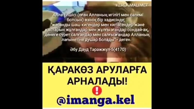 Видеозапись.mp4