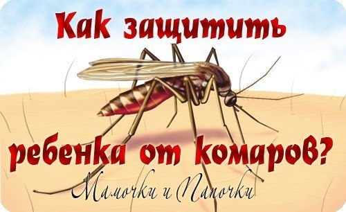 10 НАРОДНЫХ СРЕДСТВ ОТ КОМАРОВ Комары так же, как и мы, чутко реагируют на ароматы. Но в отличие от нас, терпеть не могут запах гвоздики, базилика, эвкалипта и аниса. 1. К отпугивающим средствам относятся... Смompemь продолжение в гpynnе ...➨