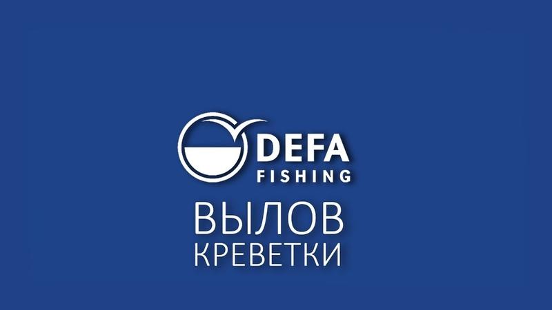 Вылов креветки - DEFA Fishing