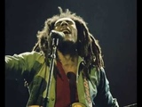 Magnifico Marley &amp The Wailers HD