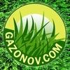 GAZONOV.COM - Эксперт в мире газонов