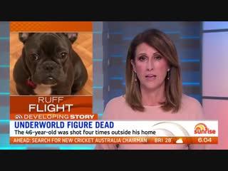 Ламар Паттерсон был задержан в Австралии после того, как провез в страну свою собаку в ручной клади