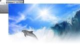 Ангел А _ Все дельфины в ураган