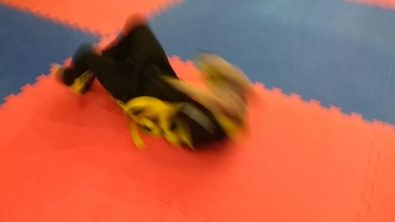 Тренировка смешанная группа Люсдокан карате mp4