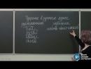Русский язык. 11 класс, 2013. Задание А1, подготовка к ЕГЭ. Центр онлайн-обучени