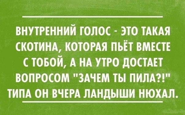 https://pp.vk.me/c7001/v7001058/1612c/Lax8R7wXFSc.jpg