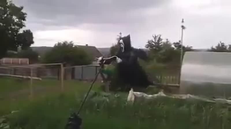 Сосед соорудил такое чудище пугало
