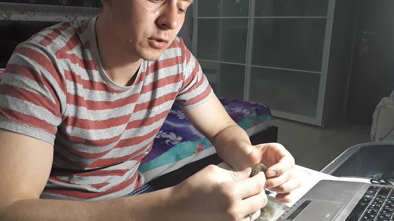 Видеообзор силикона премиум класса - keitech, по заказу fmagazin » Freewka.com - Смотреть онлайн в хорощем качестве