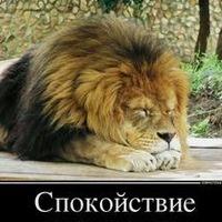 Лев Бекчев, 20 февраля 1984, Кобрин, id205679214