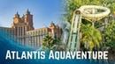 Water Slides at Atlantis Aquaventure Dubai! Atlantis The Palm