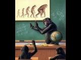 Эволюция мифа. Как человек стал обезьяной?