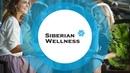 Уникальная презентация Siberian Wellness «Сибирское здоровье»