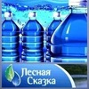 """""""Лесная Сказка"""" Доставка питьевой воды"""
