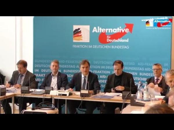 PK AfD Fraktion zum Global Compact for Migration u a mit Gottfried Curio,Martin Hebner 27.11.2018