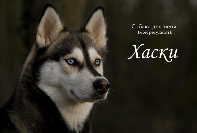 фото из альбома Андрея Боровкова №9