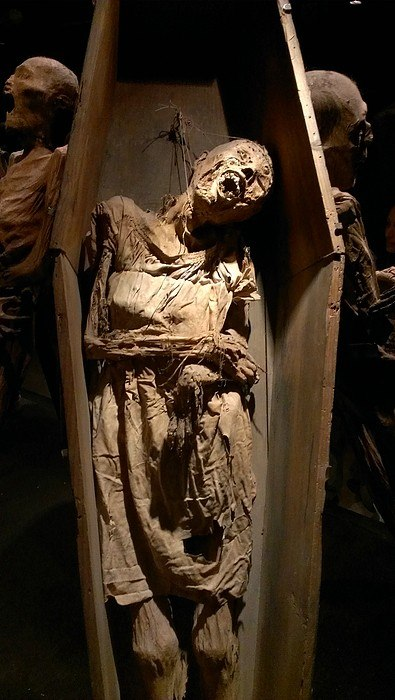 музей мумий1