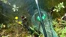 Летняя ловля золотого карася в лесном пруду на поплавочную удочку