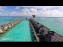 Sun Island - Whale Shark Experience