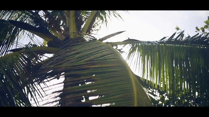 Onisu - Sparkling Waves Ahead (Original Mix Video) [CD-R]
