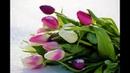 С днем рождения в феврале ❤ Красивое поздравление ❤