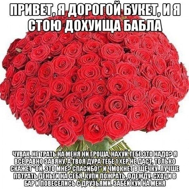 http://cs417316.vk.me/v417316653/479e/0rhlq8mkhJ0.jpg